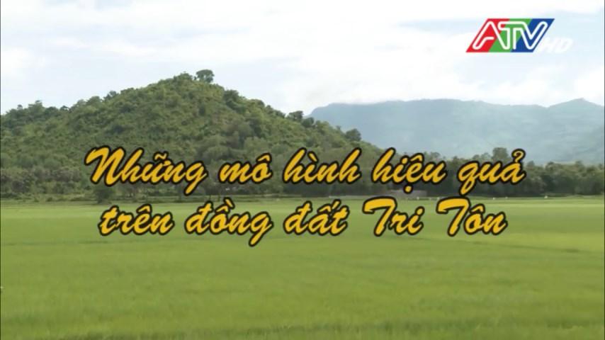 Đài Phát thanh Truyền hình An GIang - Những mô hình hiệu quả trên vùng đất Tri Tôn