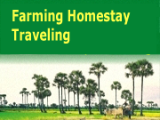 Farming Homestay Traveling