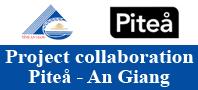 Pitea - An Giang
